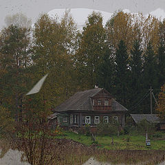 """фото """"Осень за окном"""""""