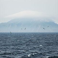 """фото """"Таинственный остров"""""""