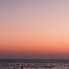 """фото """"Луна и последняя фаза заката"""""""