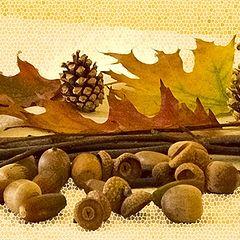 """фото """"Осенний натюрморт"""""""