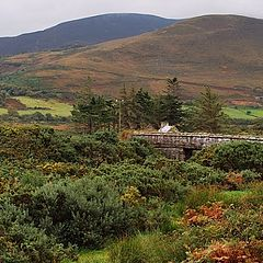 """фото """"Ring of Kerry"""""""