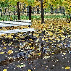 """фото """"в осеннем парке 2"""""""