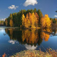 """фото """"Осенние краски с отражениями"""""""