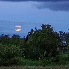 "фото ""Лунный вечер в деревне"""