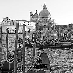 """фото """"Венеция графичная"""""""