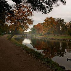 """photo """"Autumn in Sweden"""""""