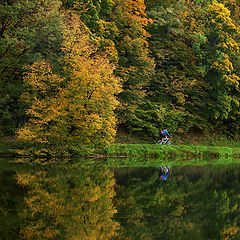 "фото ""Прогулка в осень"""
