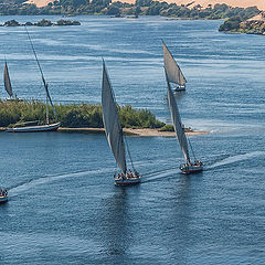 "фото ""Ballet on the Nile"""