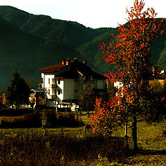 "photo ""Autumn in the Rhodopes"""