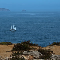 "photo ""Cape Carvoeiro"""