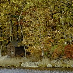"""фото """"Golden autumn at Harriman State Park"""""""