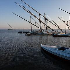"""photo """"Masts on the lake"""""""