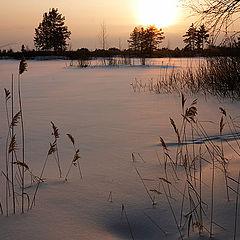 """photo """"Lozhkova Storozhka, Moscow region"""""""