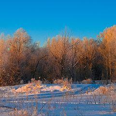 """фото """"Зима за городом"""""""