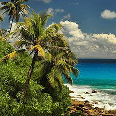 """photo """"Machabee beach"""""""