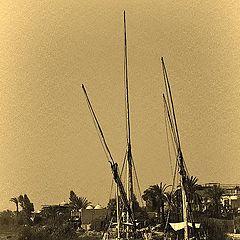 """фото """"Sail boats"""""""
