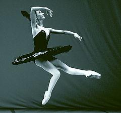 """фото """"танец черного лебедя"""""""