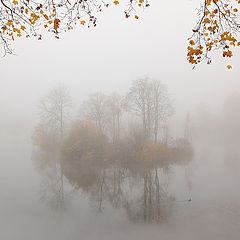 """фото """"Про опадающие листья"""""""