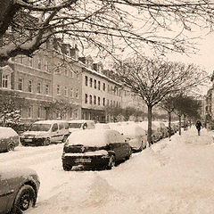"photo ""Winter study"""