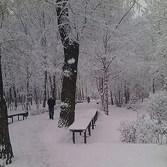 """фото """"один день обычной зимы"""""""