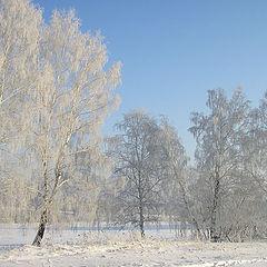 """фото """"Морозный день"""""""