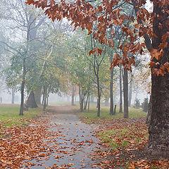"""фото """"Осень в парке"""""""