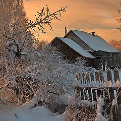 """фото """"Зимним утром"""""""