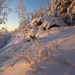 """фото """"Морозно / 0215_0276"""""""