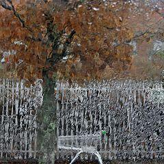 "фото ""Такая вот зима."""