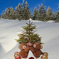 "фото ""Merry Christmas, dear friends!"""