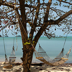 "фото ""The Beach"""
