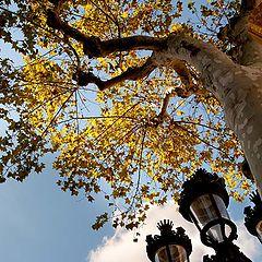 "photo ""Barcelona sketches- 2"""