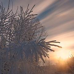 """фото """"Рождение зимнего дня"""""""
