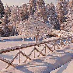 """фото """"Зима в парке..."""""""
