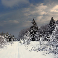 "фото ""Снежное небо"""