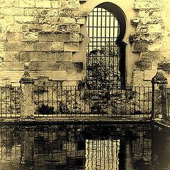 "фото ""Window of Alcazar de Cordoba"""