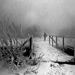 "фото ""Уходящая в туман"""