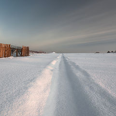 "фото ""Вечерний снег"""