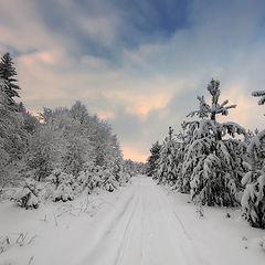 "фото ""Краски зимнего неба"""