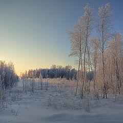 """фото """"Зимнее солнце"""""""