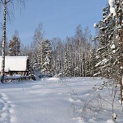 """фото """"Живет зима в избушке"""""""