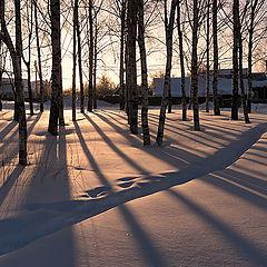 """фото """"Свет и тени зимнего утра"""""""