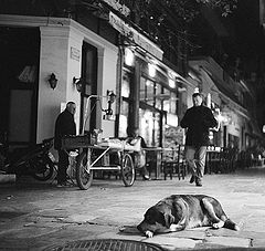 "фото ""Район Плака ночью"""