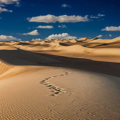 "фото ""World of Dunes"""