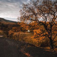 """фото """"Осенними дорогами"""""""