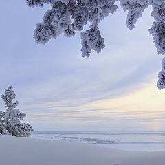 """фото """"Морозная тишина"""""""