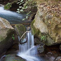 """фото """"Река Баниас"""""""