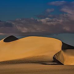 """фото """"Dunes 5"""""""