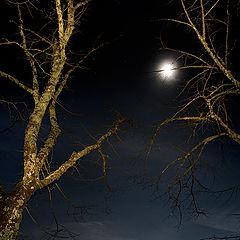 """photo """"San Galgano moonlight"""""""