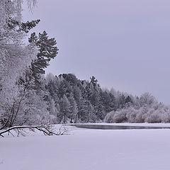 """фото """"Во владениях зимы."""""""